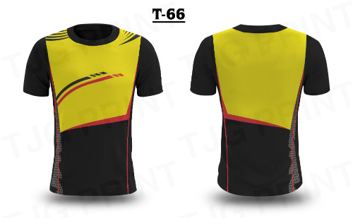 T3D 66